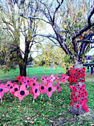 Photograph of Poppy Remembrance Display